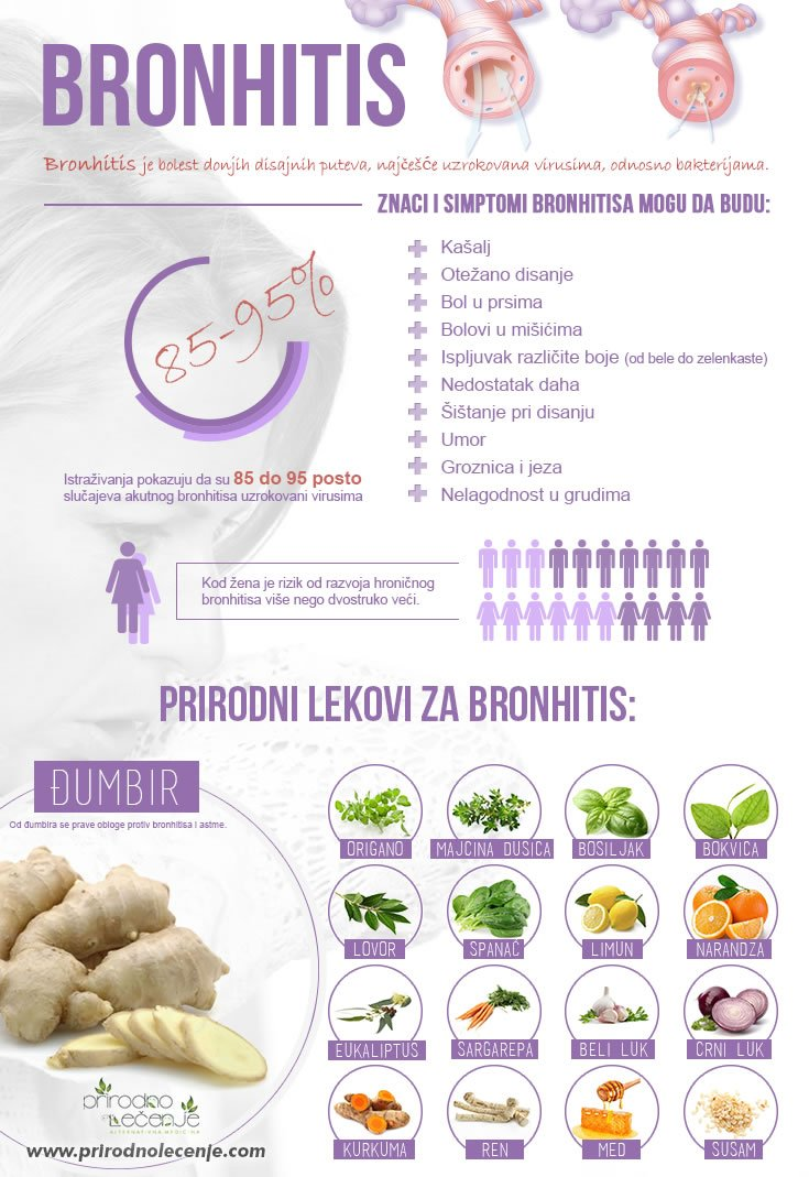 Bronhitis-infografik