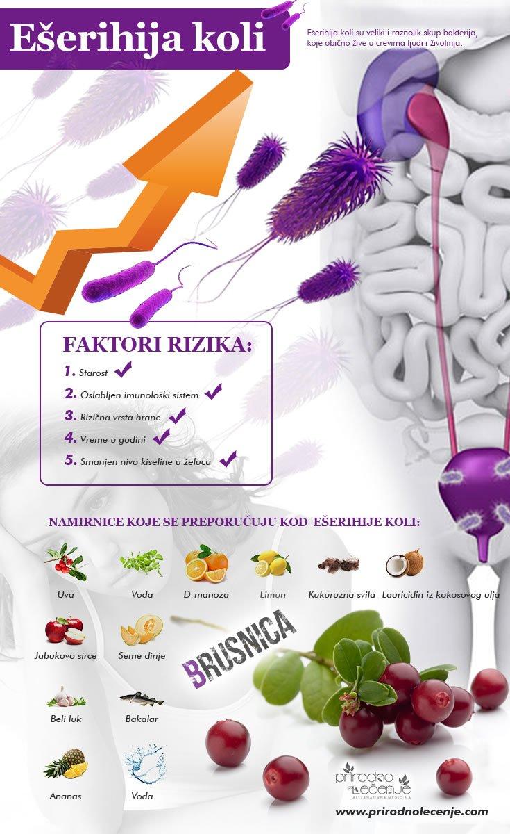 eserihija-koli-infografik