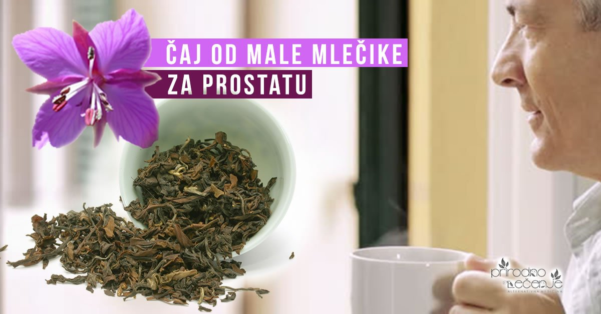 caj-od-male-mlecike-vrbovice