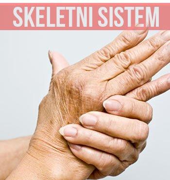 skeletni-sistem-lupus